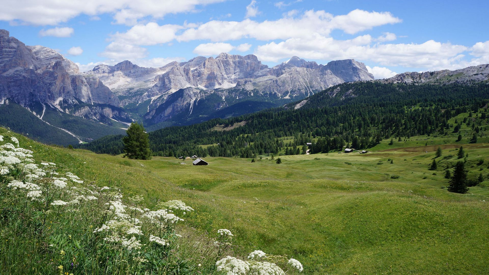 Immagine: L'Alta Badia in estate